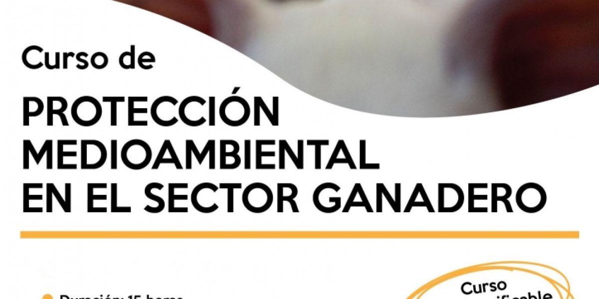 CARTEL-CURSO-PROTECCION-MEDIOAMBIENTAL-TFNO-NUEVO-SIN-FECHAS-web-724x1024